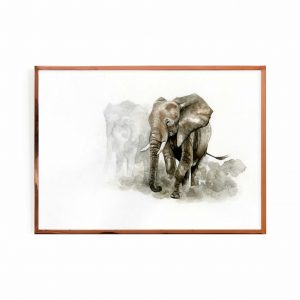 The migration (elephants)